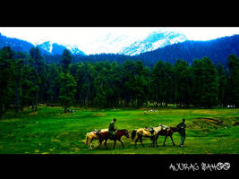 Scenic Kashmir