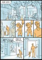 Adopting Sumo - page 1