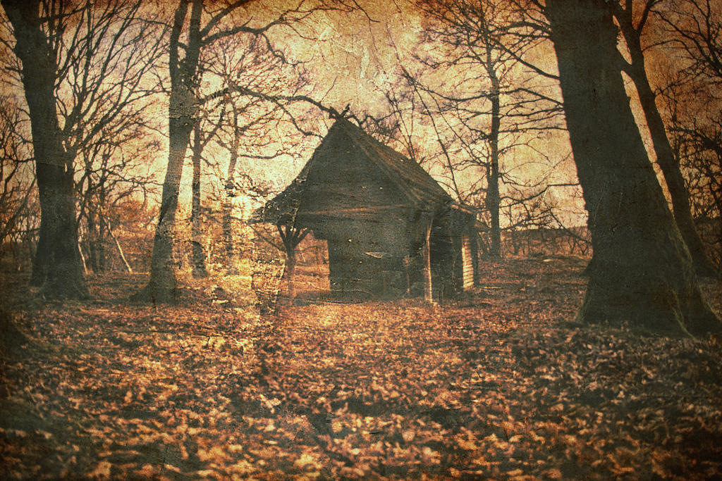 Witch House By Stupidduck ...