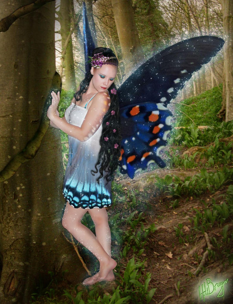 woodland fairy by harry241
