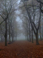 Autumn Path 12 by pelleron-stock