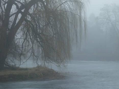 Foggy Pond 7