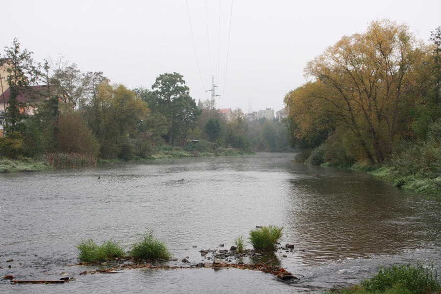 misty river dating Misty river introductions - carleton place - phone number, website & address - on - introduction & dating services.