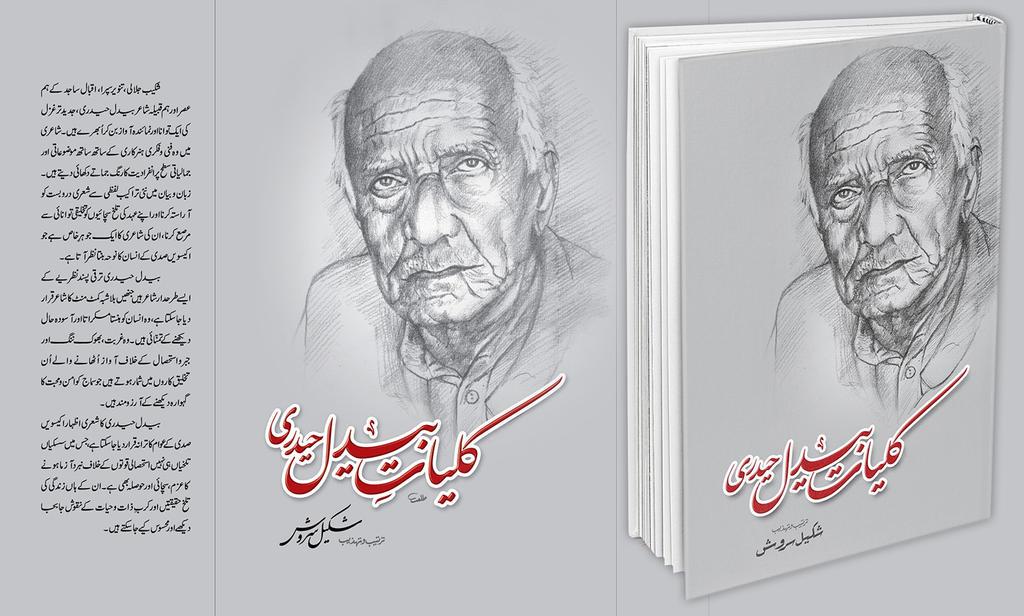 Baidal Haidri (Book Cover) by Shaket
