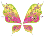 Flora believix Wings