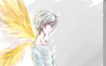NGE: Angels Wings