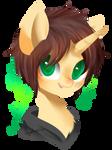 [Art trade]Pony