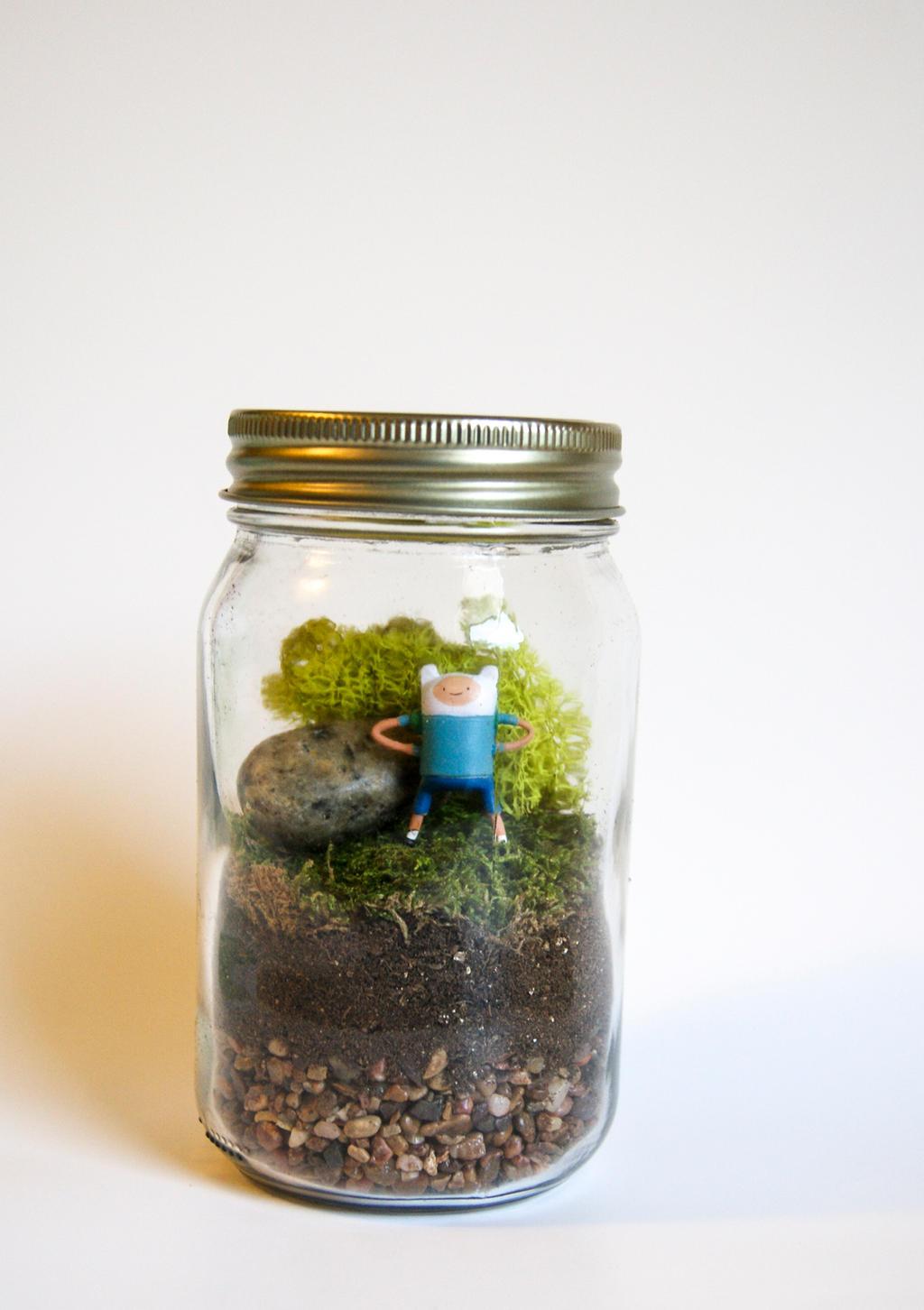 Finn Mason Jar Terrarium Adventure Time By Maforet On Deviantart