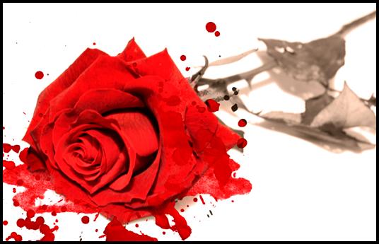 Romance Me by Eye2Soul