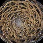 Las infiniesencias Loxodrome Torus Knot I