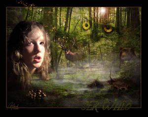 The Forrest - der Wald