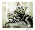 Lovers by Hiki-Hiki