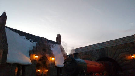 Wizarding World of Harry Potter (10)