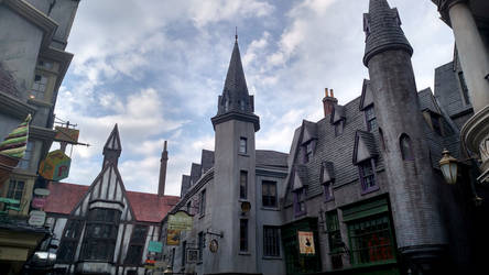 Wizarding World of Harry Potter (11)