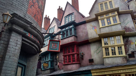 Wizarding World of Harry Potter (12)