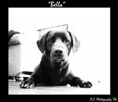 'Bella'