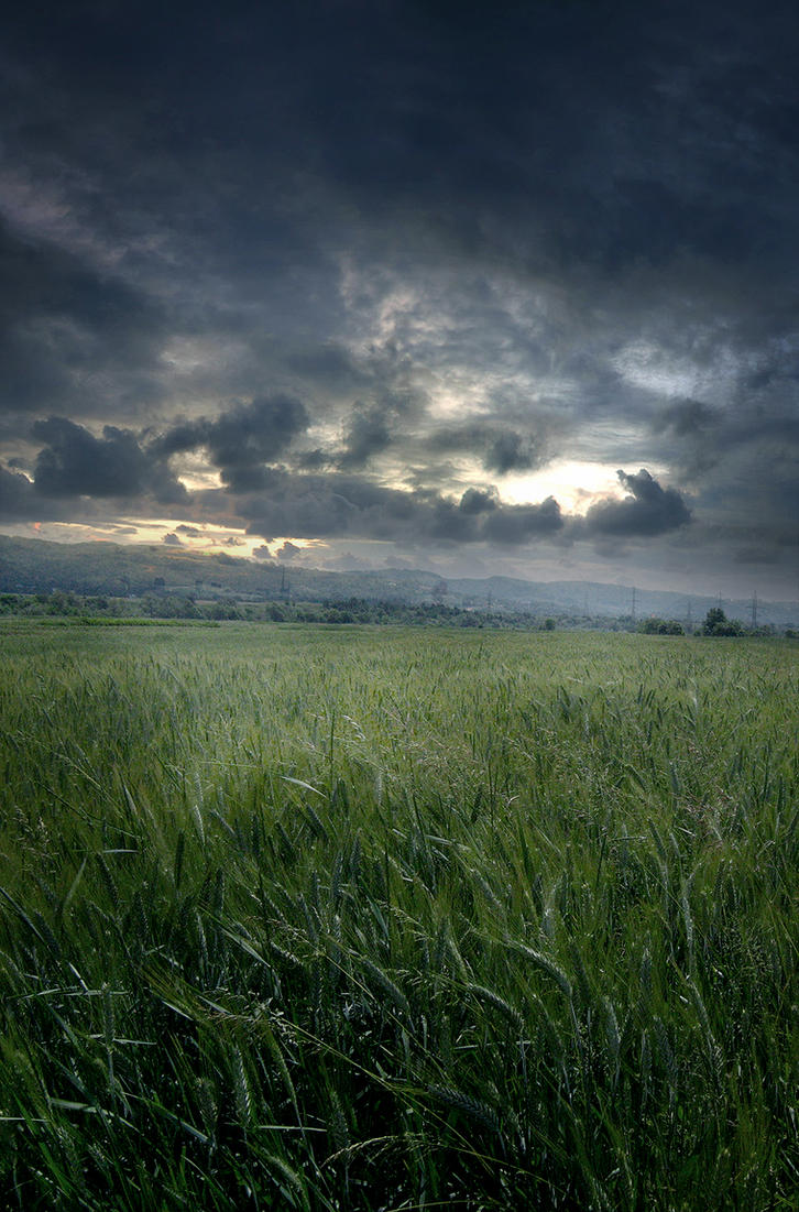 Unrestricted Stormy Field Premade By Frozenstocks On