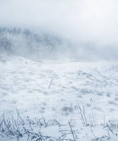 UNRESTRICTED - Winter Wonderland Premade by frozenstocks