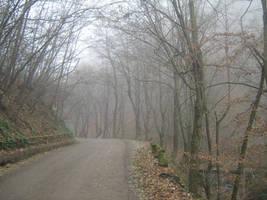 UNRESTRICTED - November '09 - Foggy Road by frozenstocks