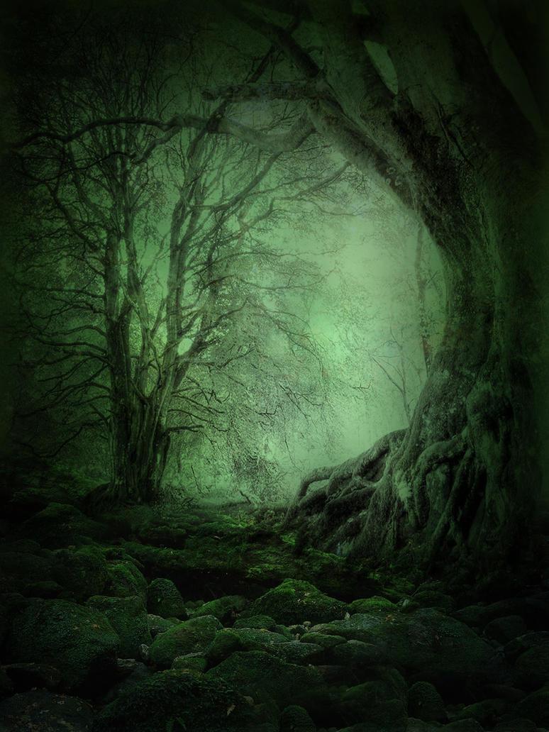 خلفيات دمج منوعه خلفيات دمج بالوان صور دمج منوعة صور unrestricted___mystery_woods_background_03_by_frozenstocks-d4k5sow.jpg