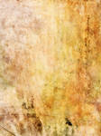 UNRESTRICTED - Warm Canvas