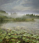 RESTRICTED - The Pond Premade Background