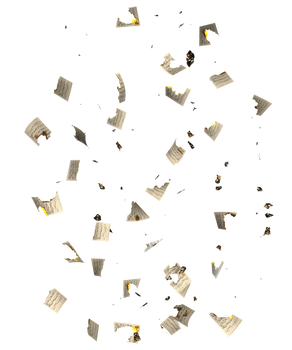 RESTRICTED - Burnt Music Sheets PNG