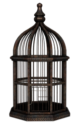 UNRESTRICTED - Rusty Birdcage Render