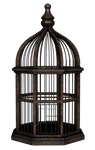 UNRESTRICTED - Rusty Birdcage Render
