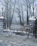 RESTRICTED - Winter Days Premade  Background