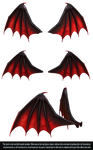 RESTRICTED - Demon Wings PNG