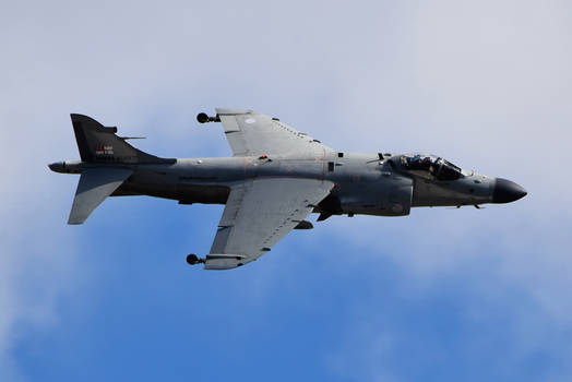 Harrier by FooFighter7