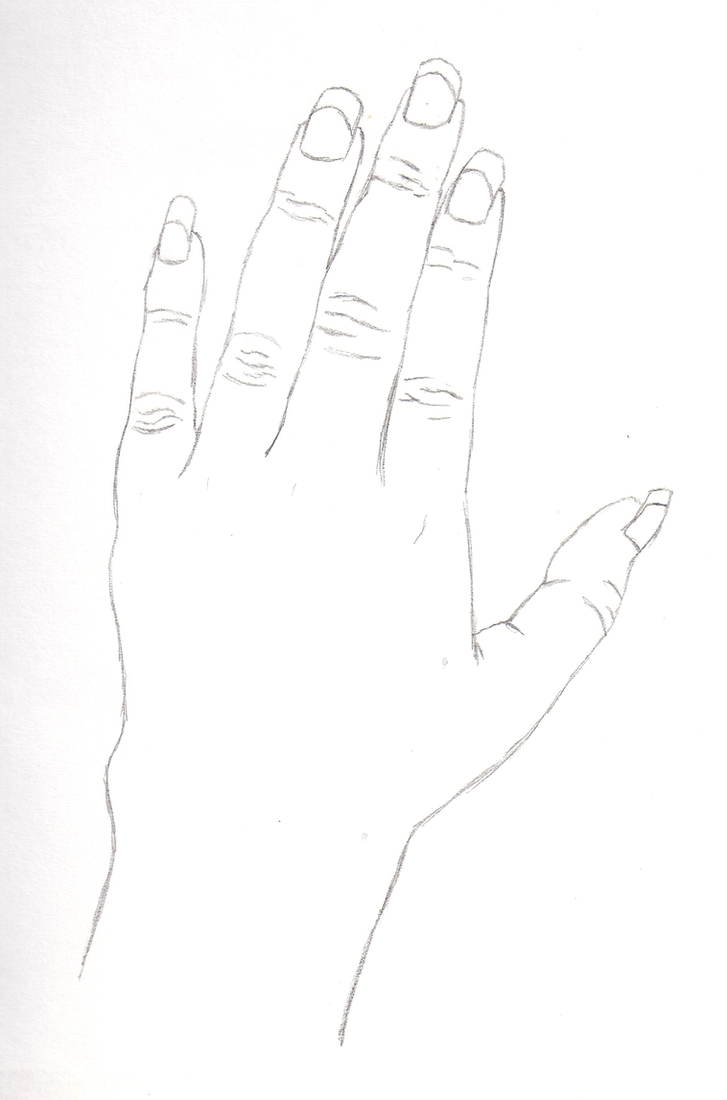 Contour Line Drawing Th Grade : Contour line hand by aurath on deviantart
