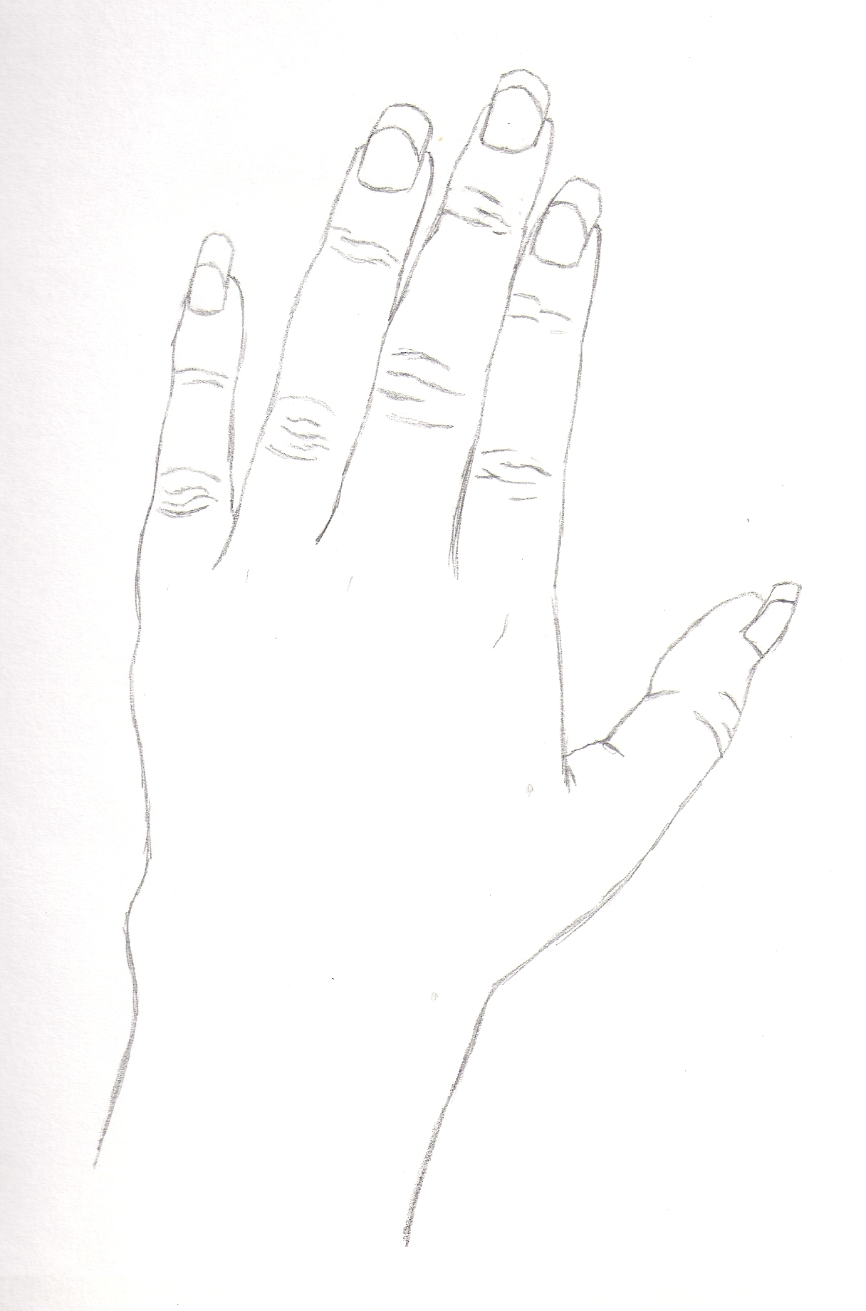 Contour line hand 2 by AuraTh56 on DeviantArt