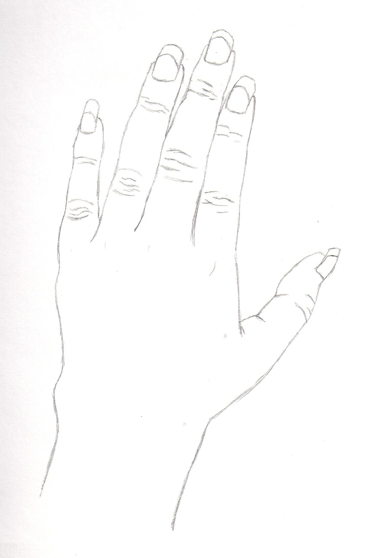 Contour line hand 2 by AuraTh56 on DeviantArt