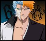 Ichigo vs Grimmjow