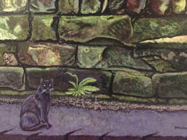 Cat by Old Wall 2020 Acr on Canvas 18X20