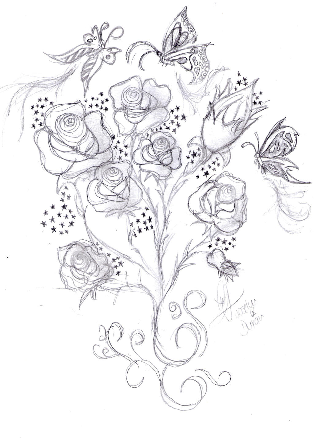 Butterfly and rose drawing - photo#25