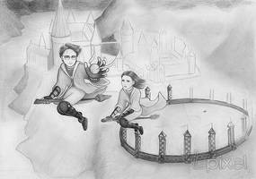 Quidditch by Lpixel