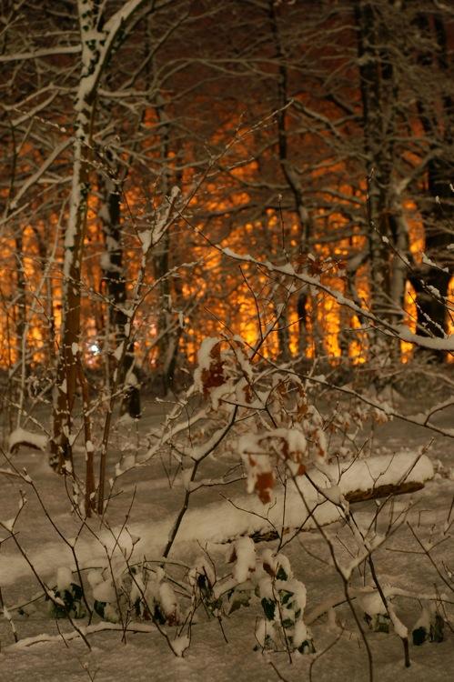 Snowfire by MedeaMelana