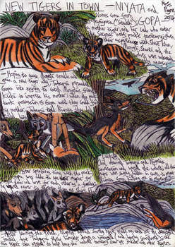 Jungle Book - New Tigers in Town
