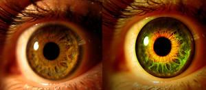 Eye Photo Manipulation in Photoshop