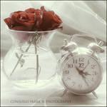 Tic...Tac...Roses