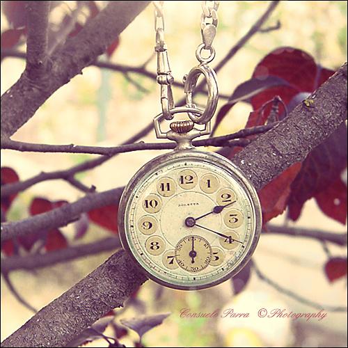 Autumn Time... by Aeternum-Art