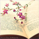 Read me a Poem...