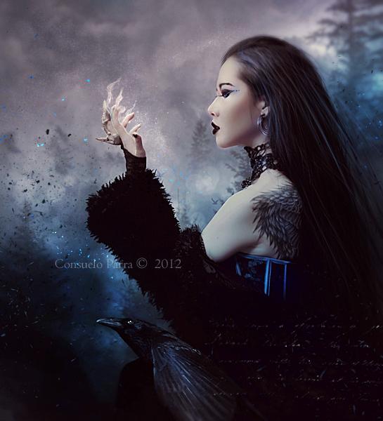 Corvus by Aeternum-Art