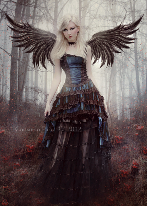 Black Angel by Consuelo-Parra