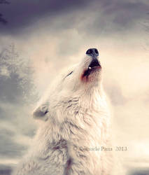Prince of Wolves by Consuelo-Parra