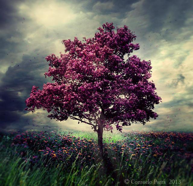 Purple soul by Consuelo-Parra