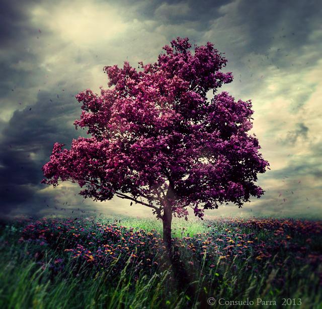 Purple soul by Aeternum-Art